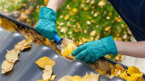 Clogged gutters, the signs they need to be cleaned this year