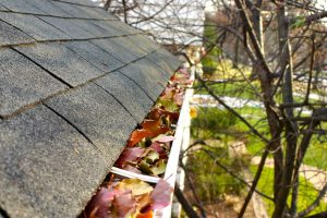Clogged gutters with leaves, dirt, mud, and water in the eavestrough